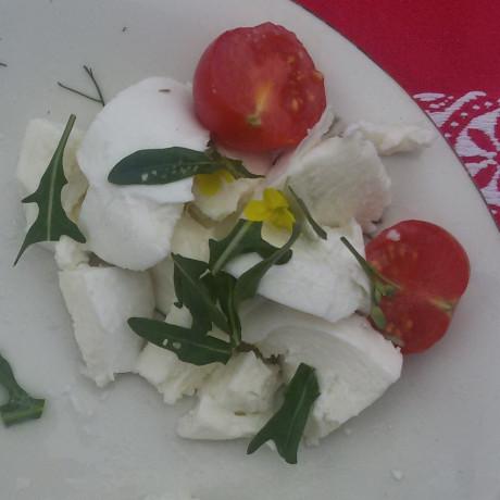 Mozzarella di Bufala AOP
