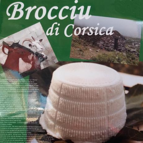 Brocciu de Corse AOP