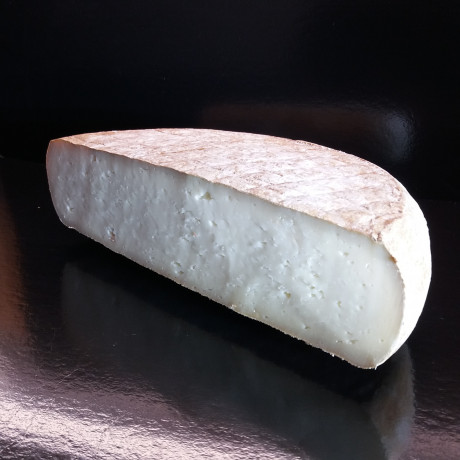 Pyrénées Brebis